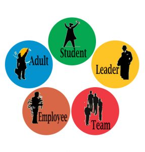 by your career status or career level (i.e. student career test, leadership test, adult career test, team test, MORE...)