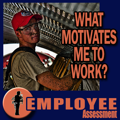 Employee Assessment - What motivates me to work