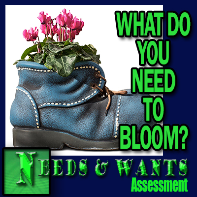 Needs Assessment - What do you need to bloom