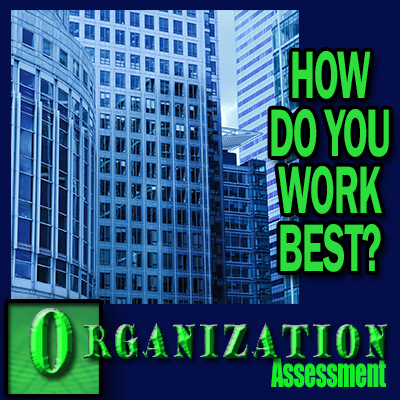 Organization Assessment - How do you work best